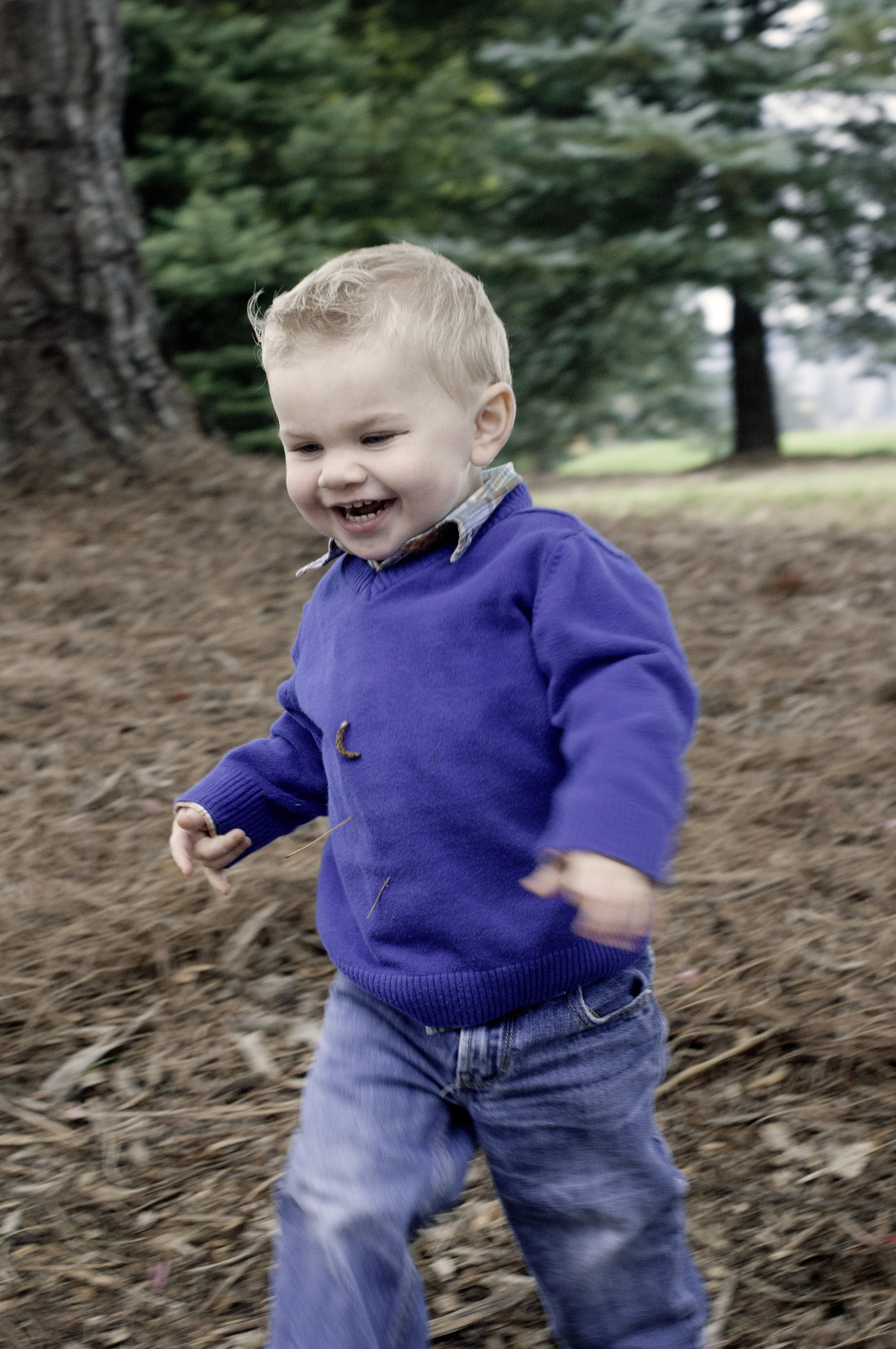 Anderson Family-chasing hudson5.jpg
