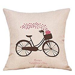 vday bike pillow case.jpg