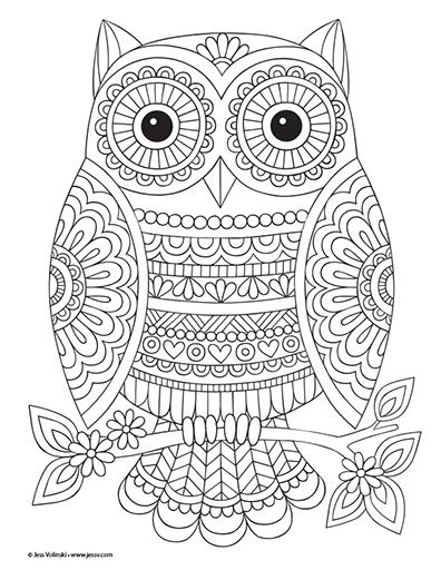 jessvolinski-SuperCute-owlsm.jpg