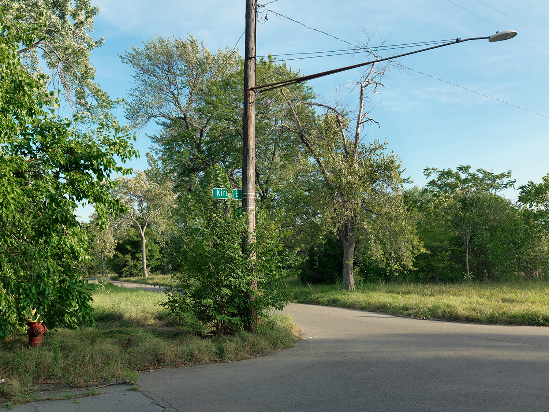 Corner-of-Kirby-and-Canton,-Detroit-2015_6589515.jpg