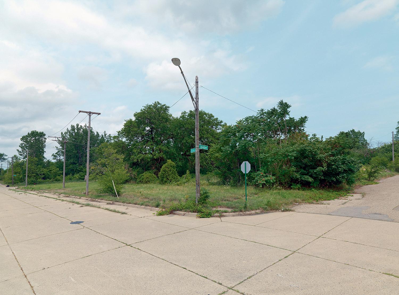 Corner,-Jordan-and-Eldon-St,-Eastside,-Detroit-2015_6590283.jpg