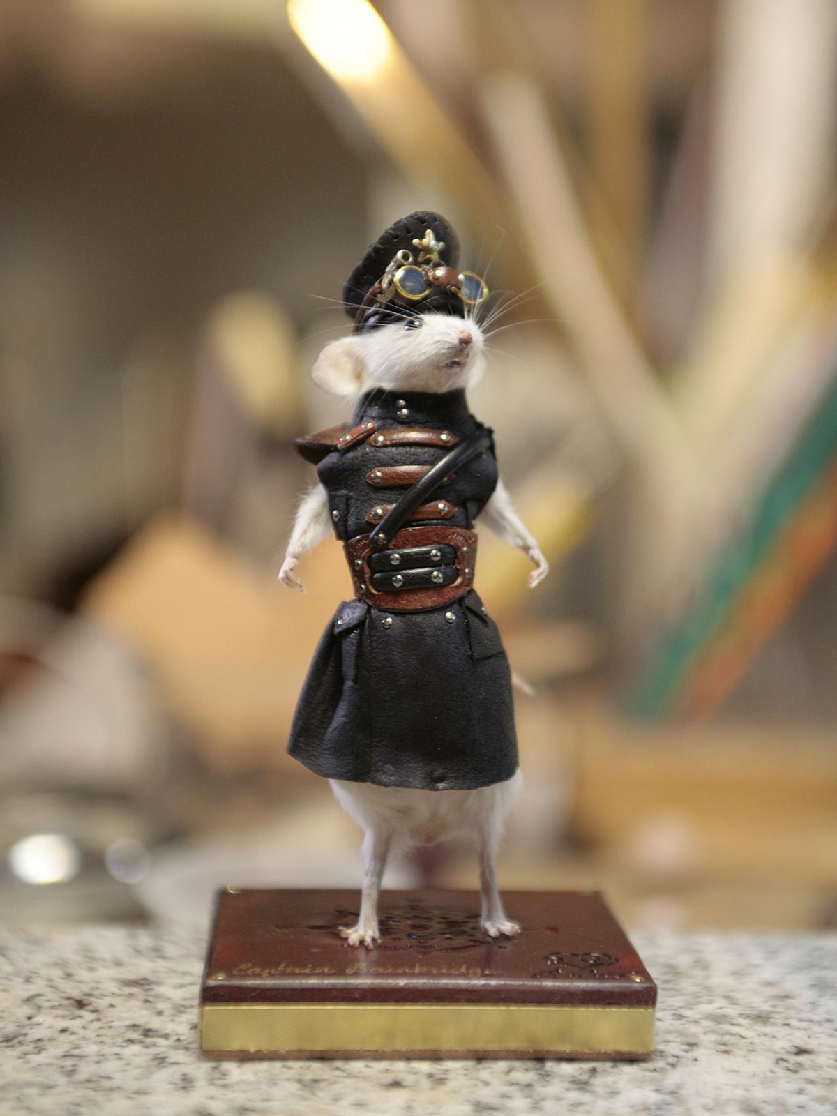 Captain Bainbridge