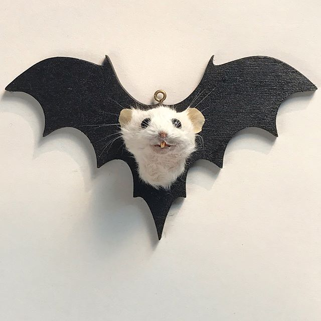 I know, but better late than never. Aren't they just perfect?? Grab one on Etsy while they last! #mouse #taxidermy #batwings #bat #halloween #whydidntithinkofitbefore