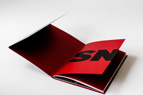 SNT002.jpg