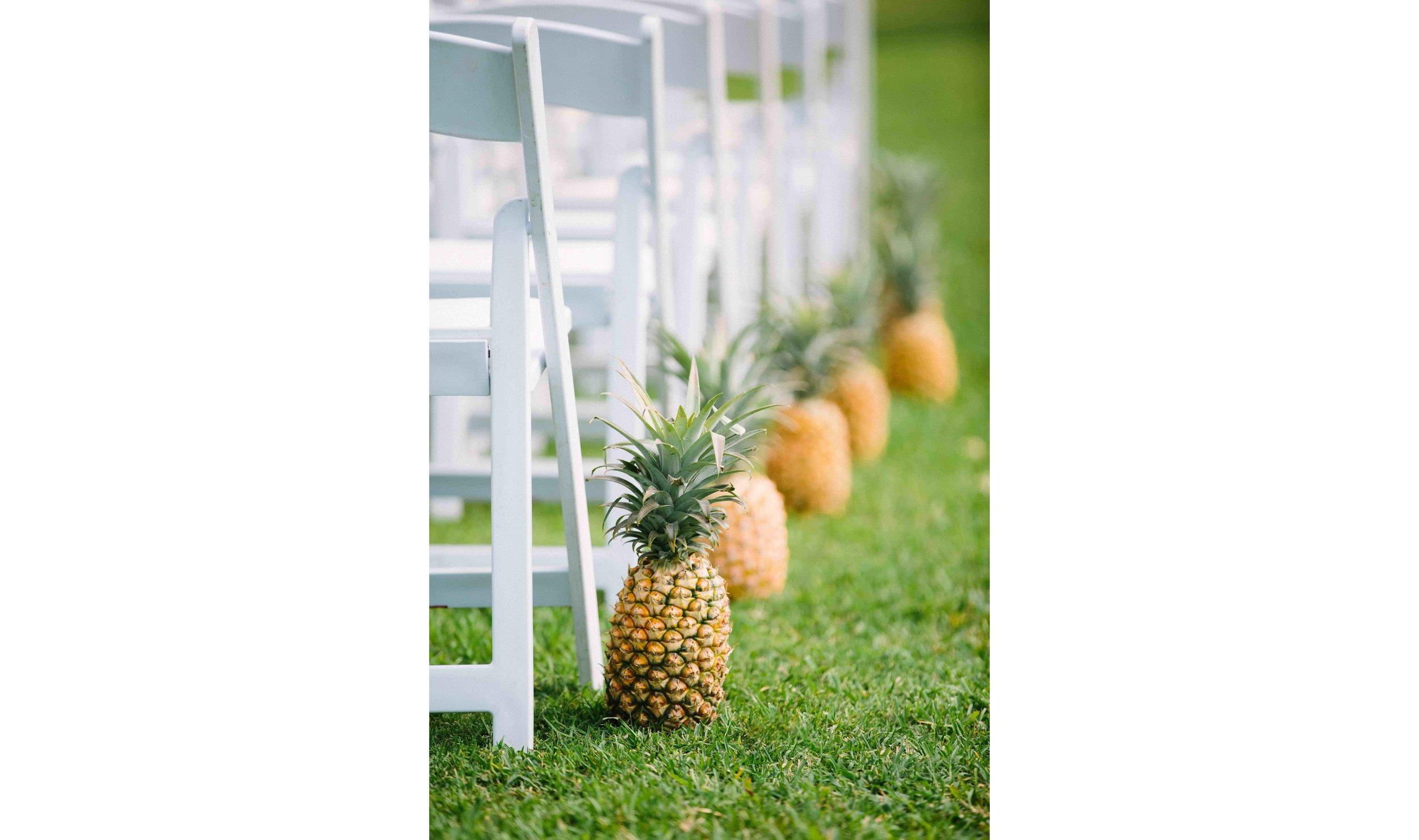 Pineapple Ceremony Hawaii Wedding Photography