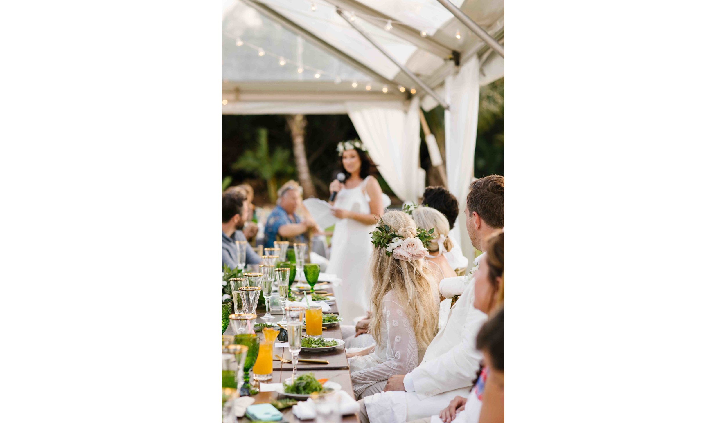 Bridesmaid's Speech During Wedding Reception