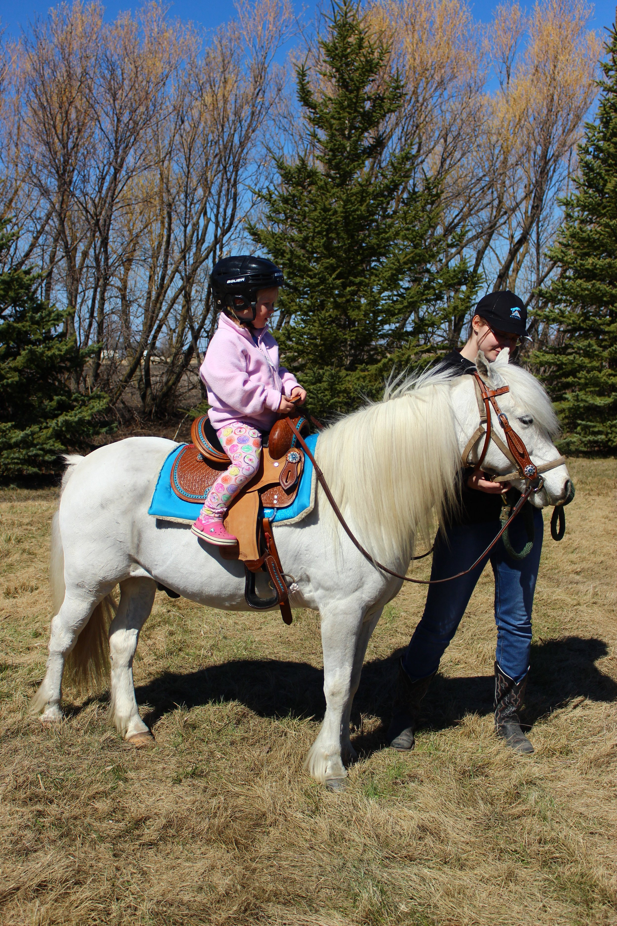 Every Kid Loves Free Pony Rides