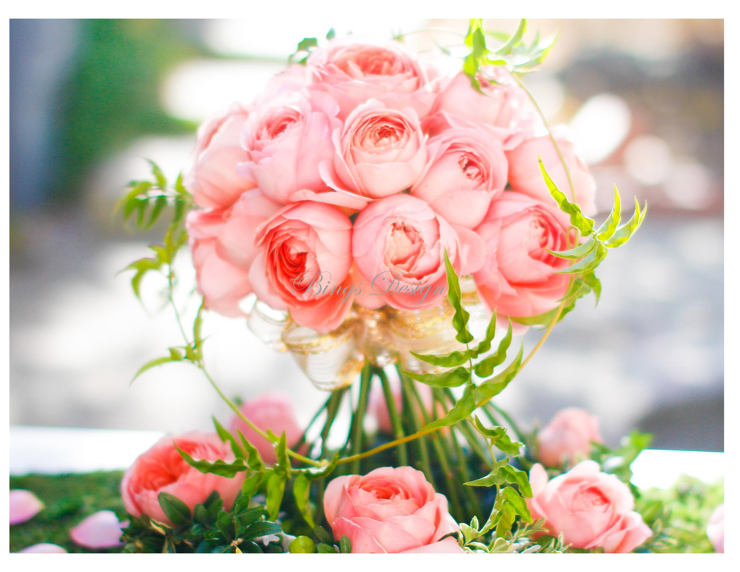 pink garden rose2.jpg