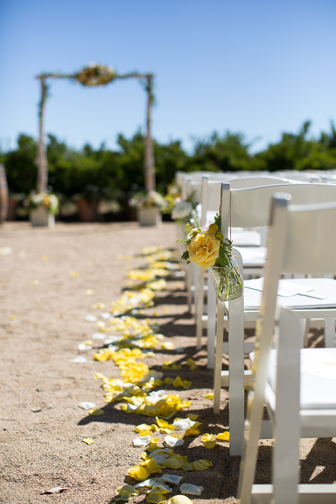 mamie-nathan-wedding--931-2.jpg