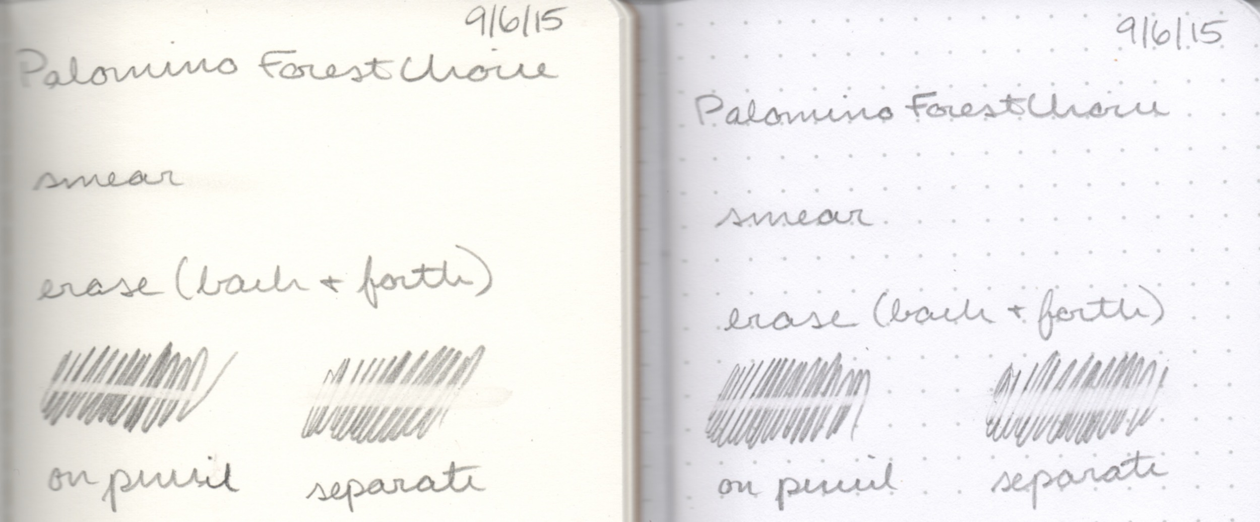 Smearing and erasing on ForestChoice notebook (left) and Field Notes Pitch Black (right).