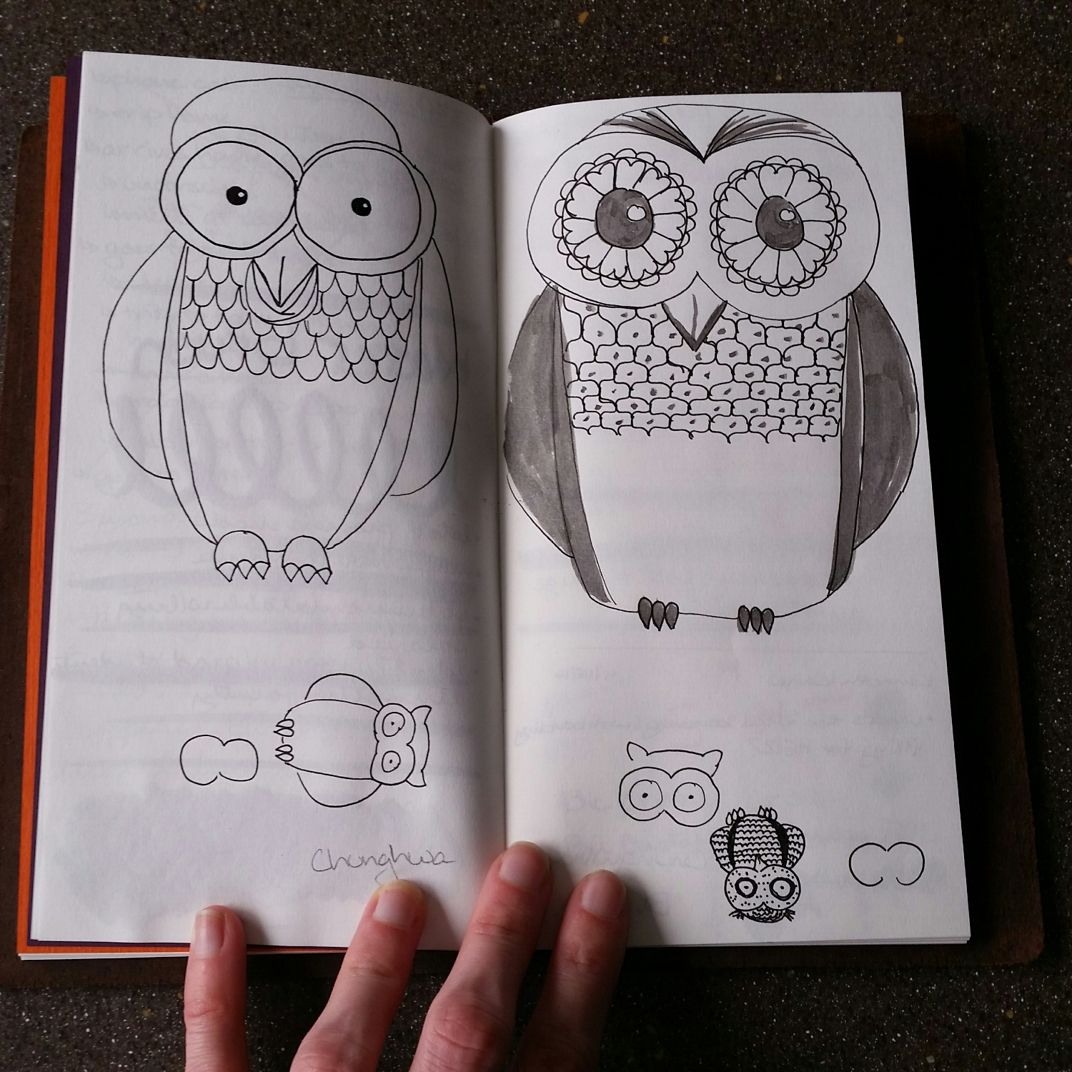 I really do draw a lot of owls. They aren't all winners