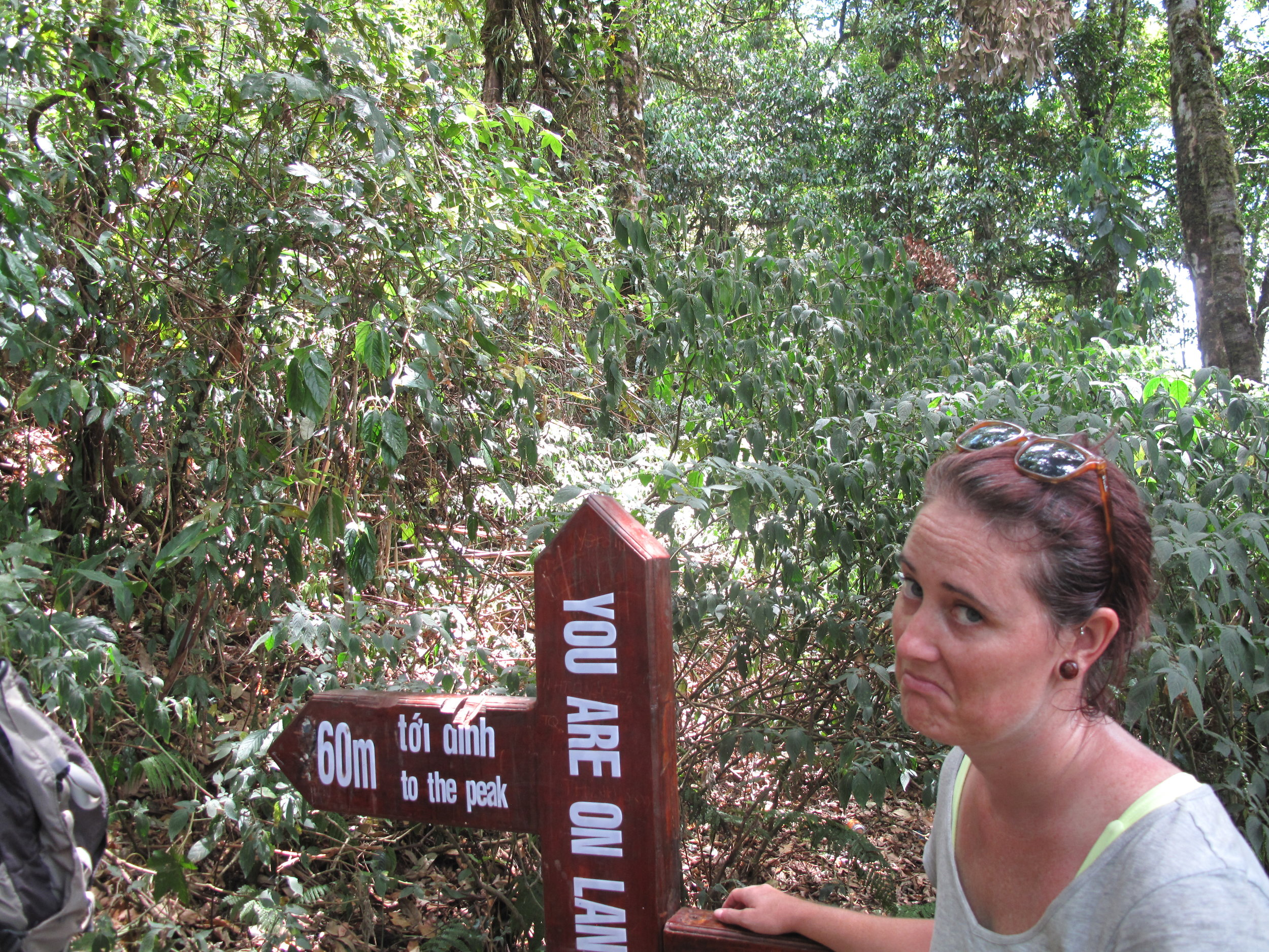 So close, yet so far... Three Peaks hike, Dalat