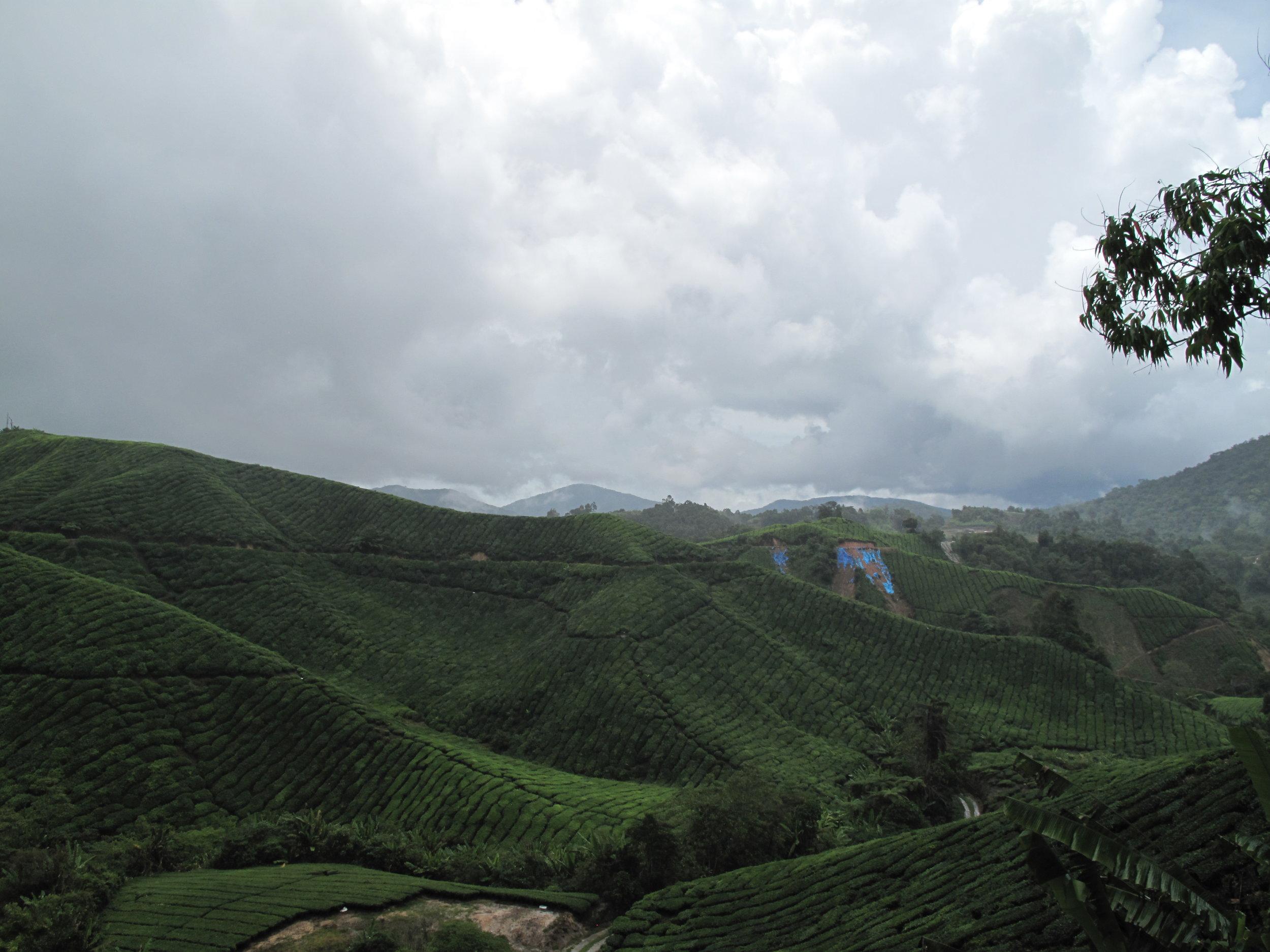 Tanah Rata, Malaysia