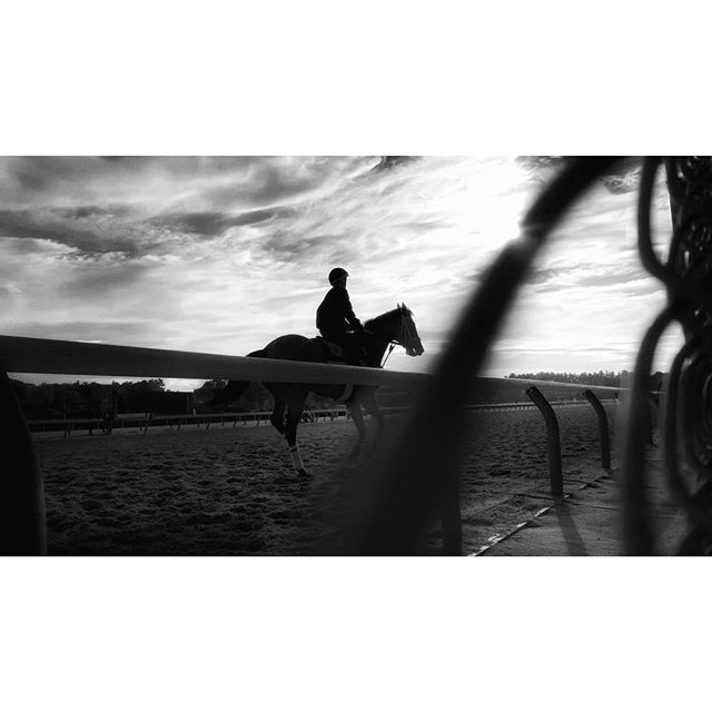 Saratoga Race Track. If you're ever there, go have breakfast at the track early in the morning and watch the horses train. It's gorgeous. #saratogasprings #racingseason #racehorses #iphonexrphotography #morninglight #bwphoto