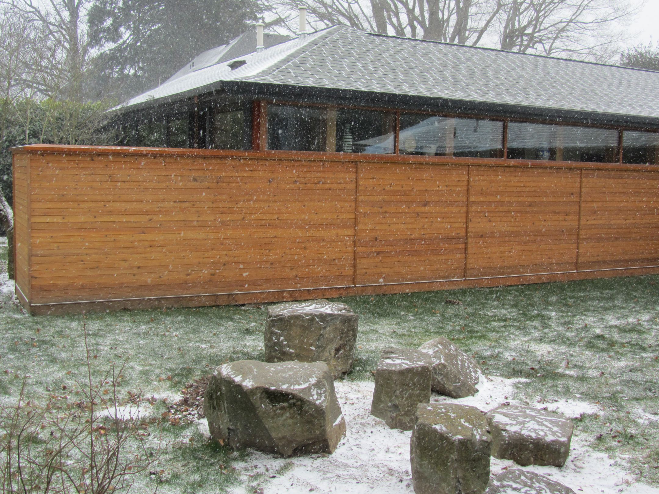 NEW Taylor Snow Rocks.jpg