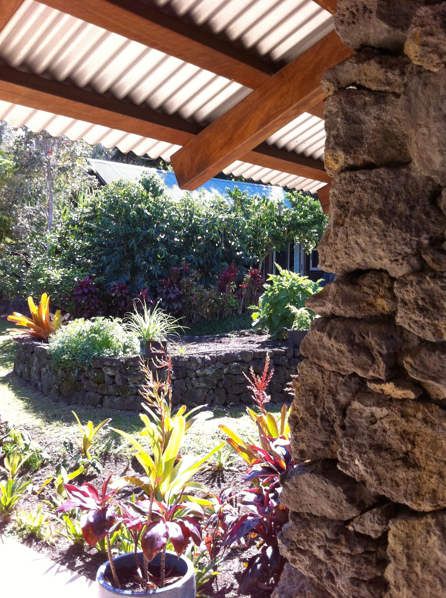 0 Hawaii 02.131.jpg