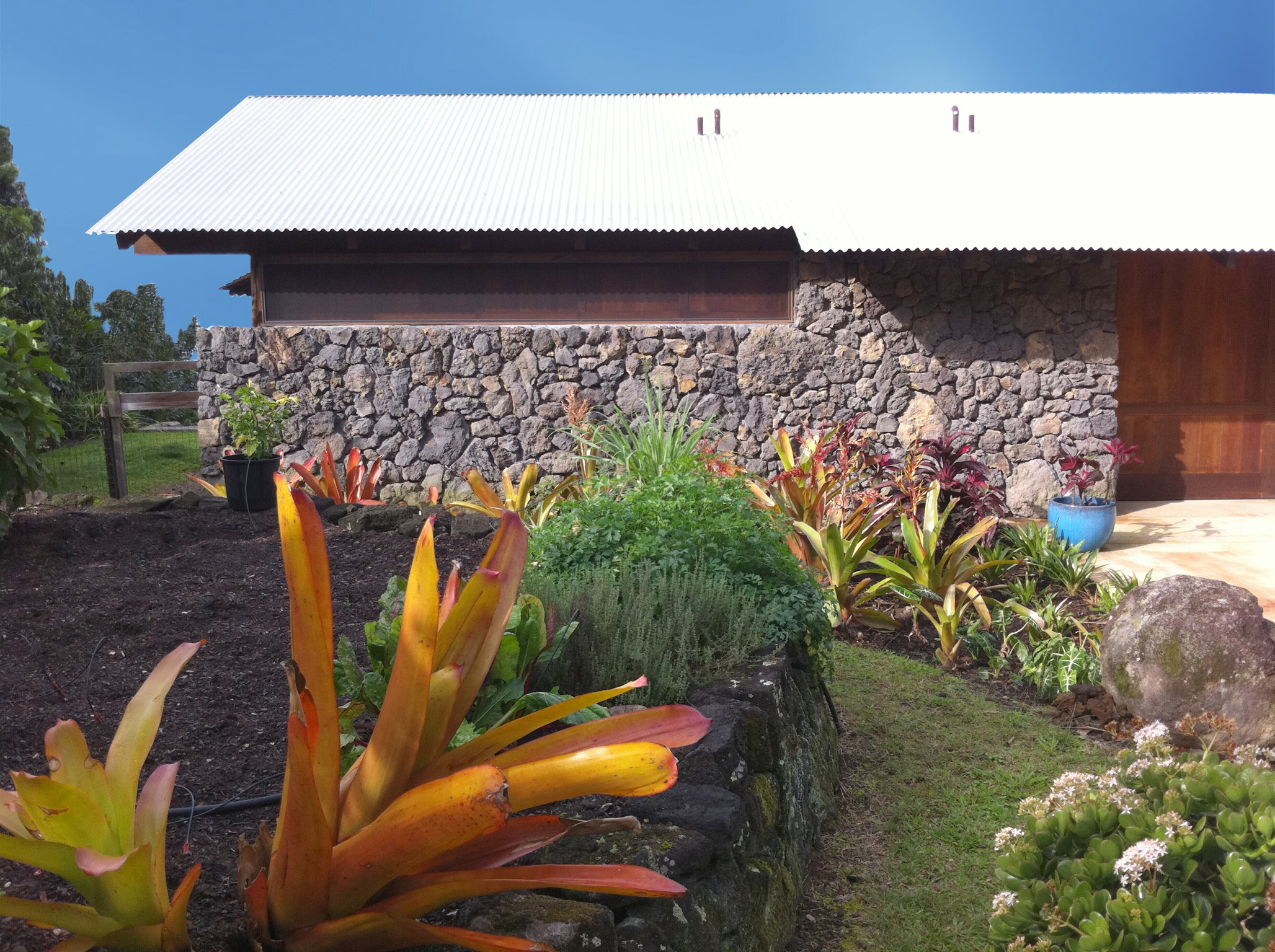 Hawaii 02.121.jpg