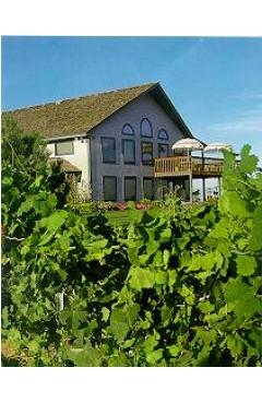 Sawtooth Winery & Tasting Room