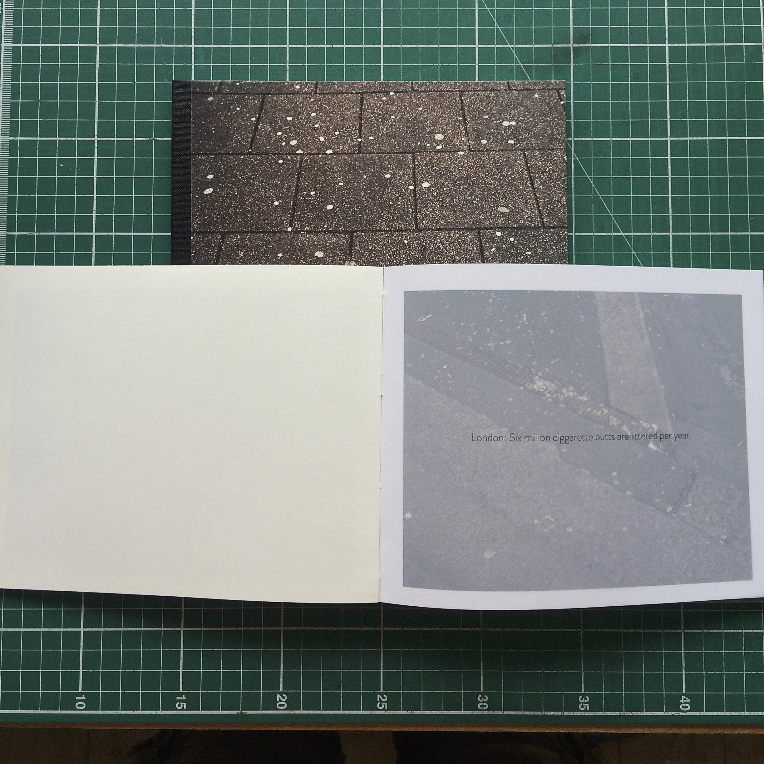Both books bound and covered, text has been printed on to tracing paper to form a series of overlays throughout the book