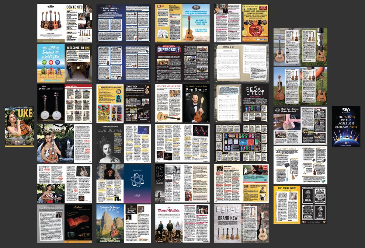 Issue_14_in_miniature.jpg