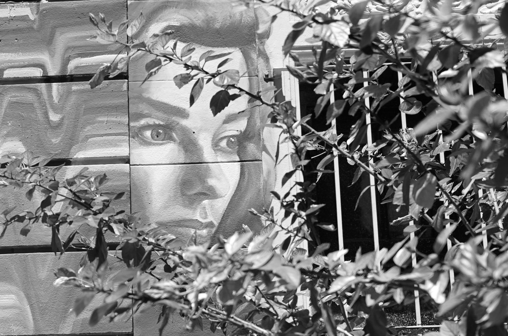 La pintada, Palermo (26.01.17)