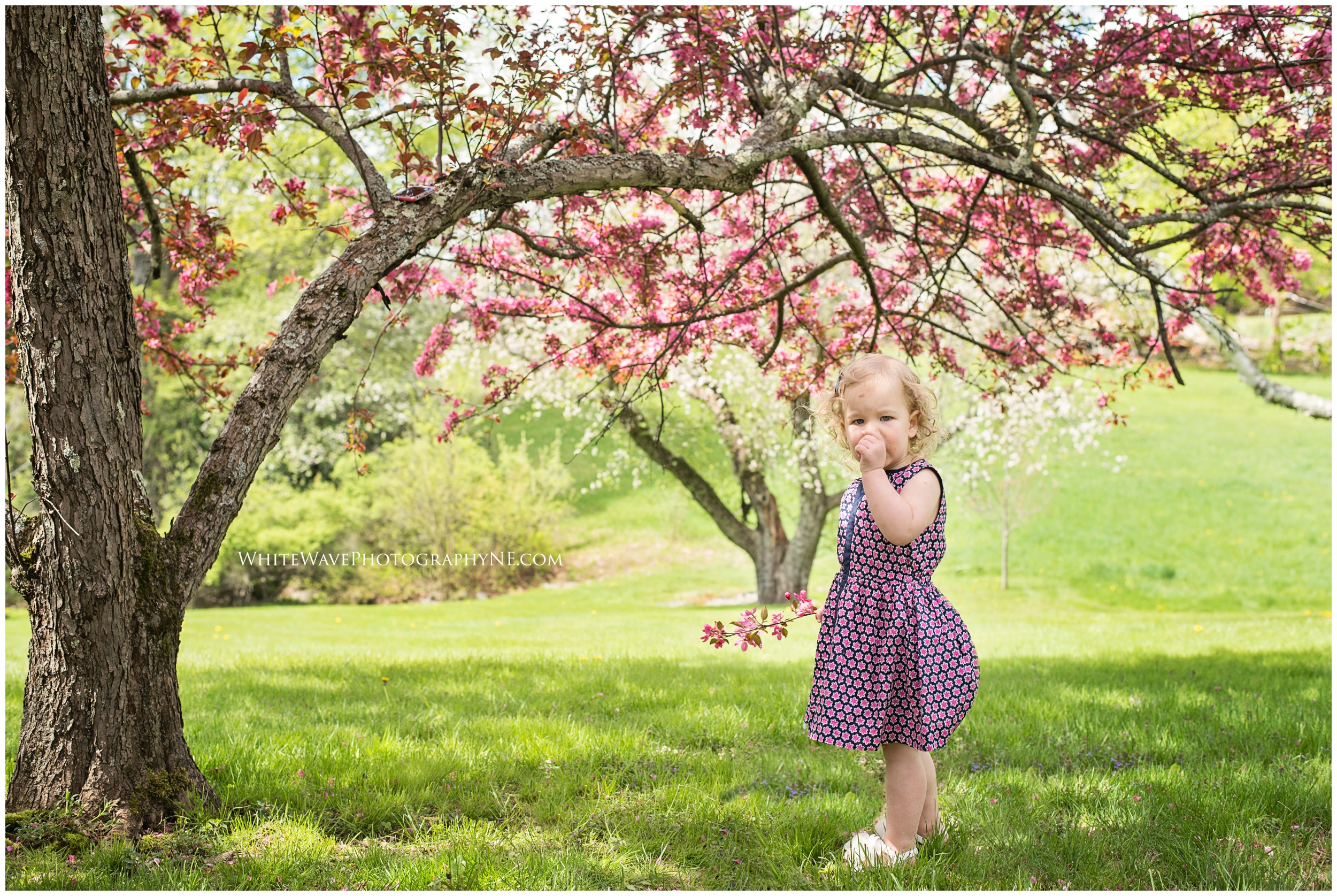 Childrens-Photographer-in-Southern-New-Hampshire_1376.jpg
