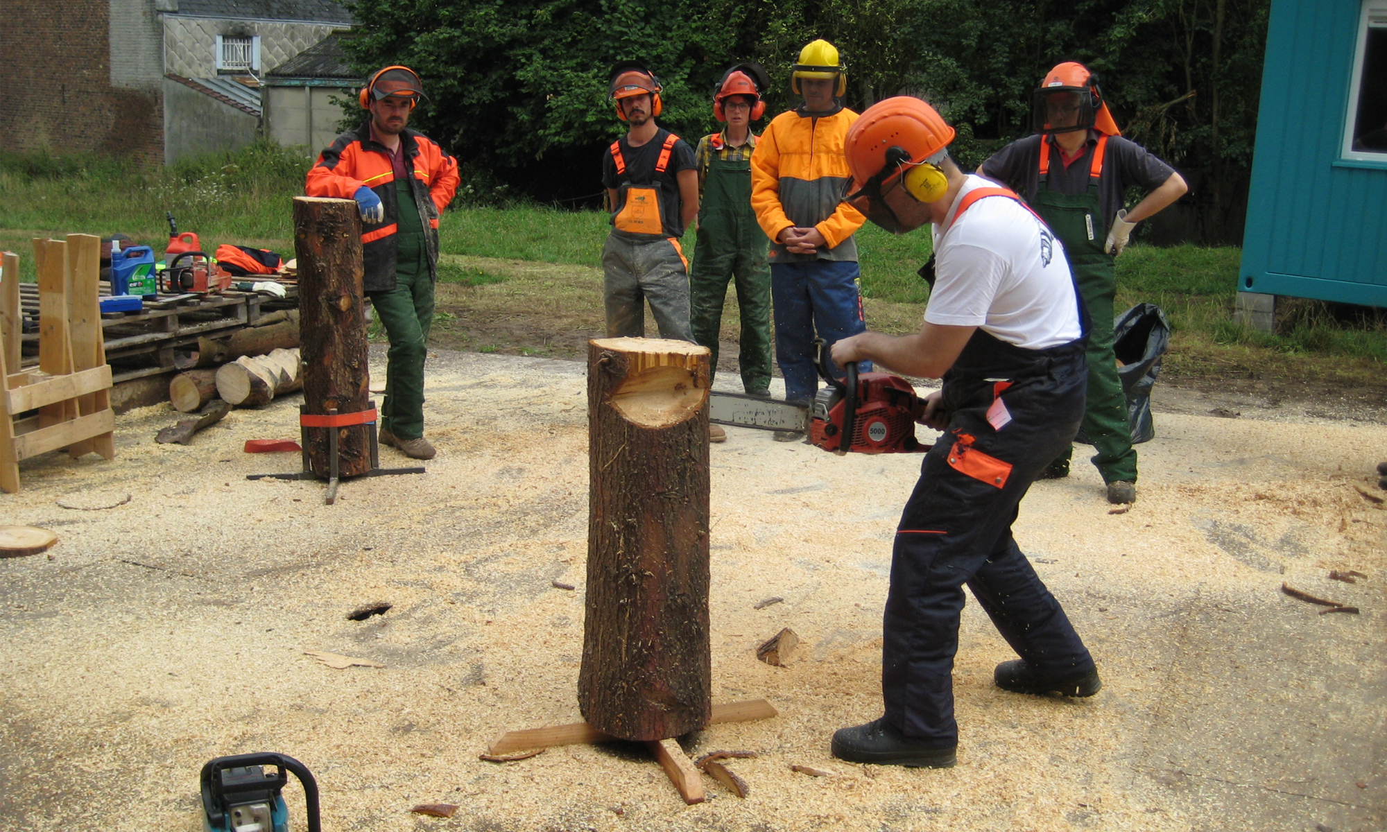 Chainsaw course.jpg