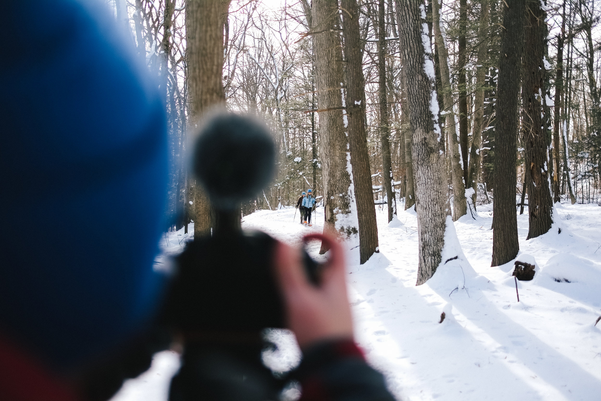 YN_KVSP_snowshoe-22.jpg