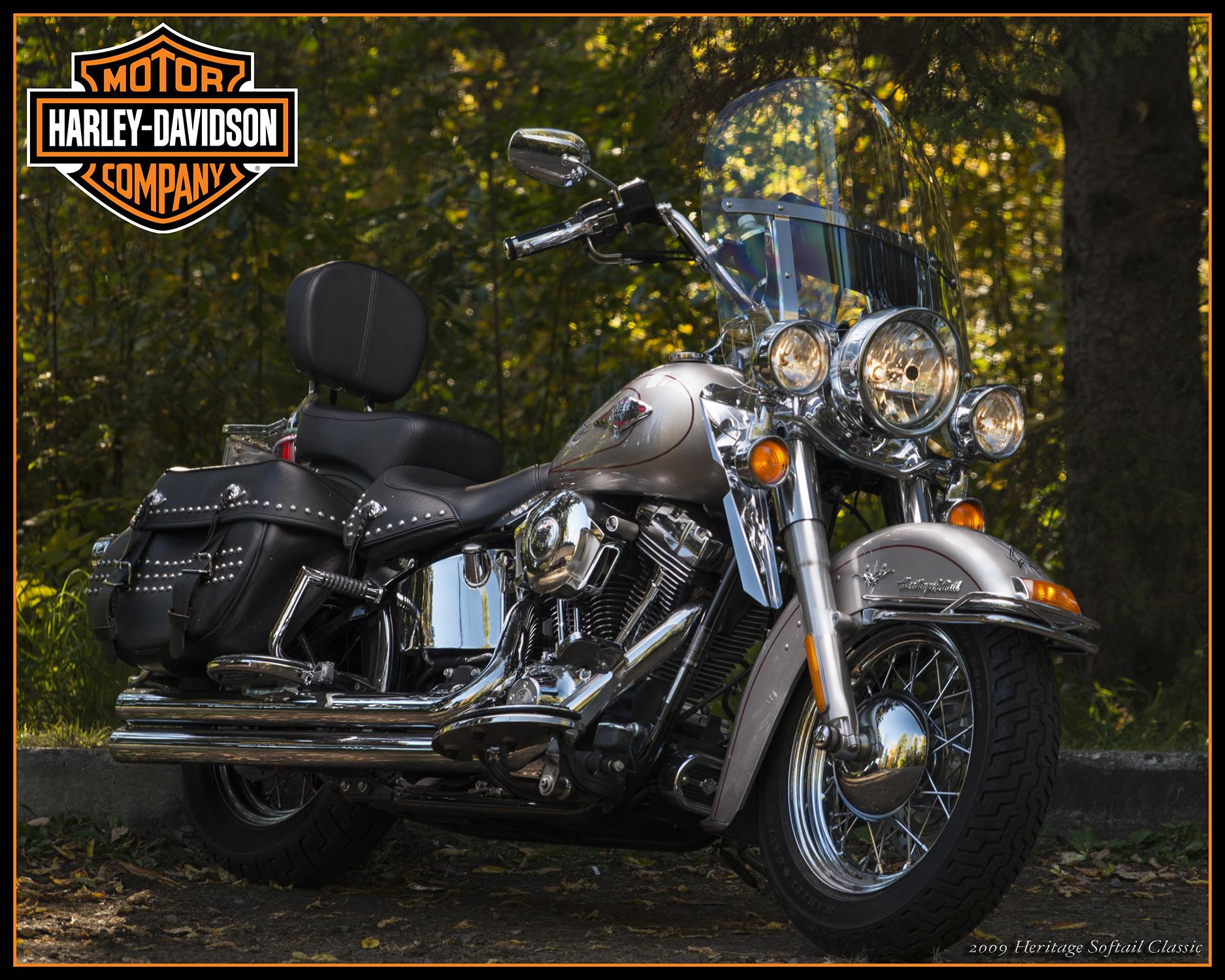 Uncle stan bike print website.jpg