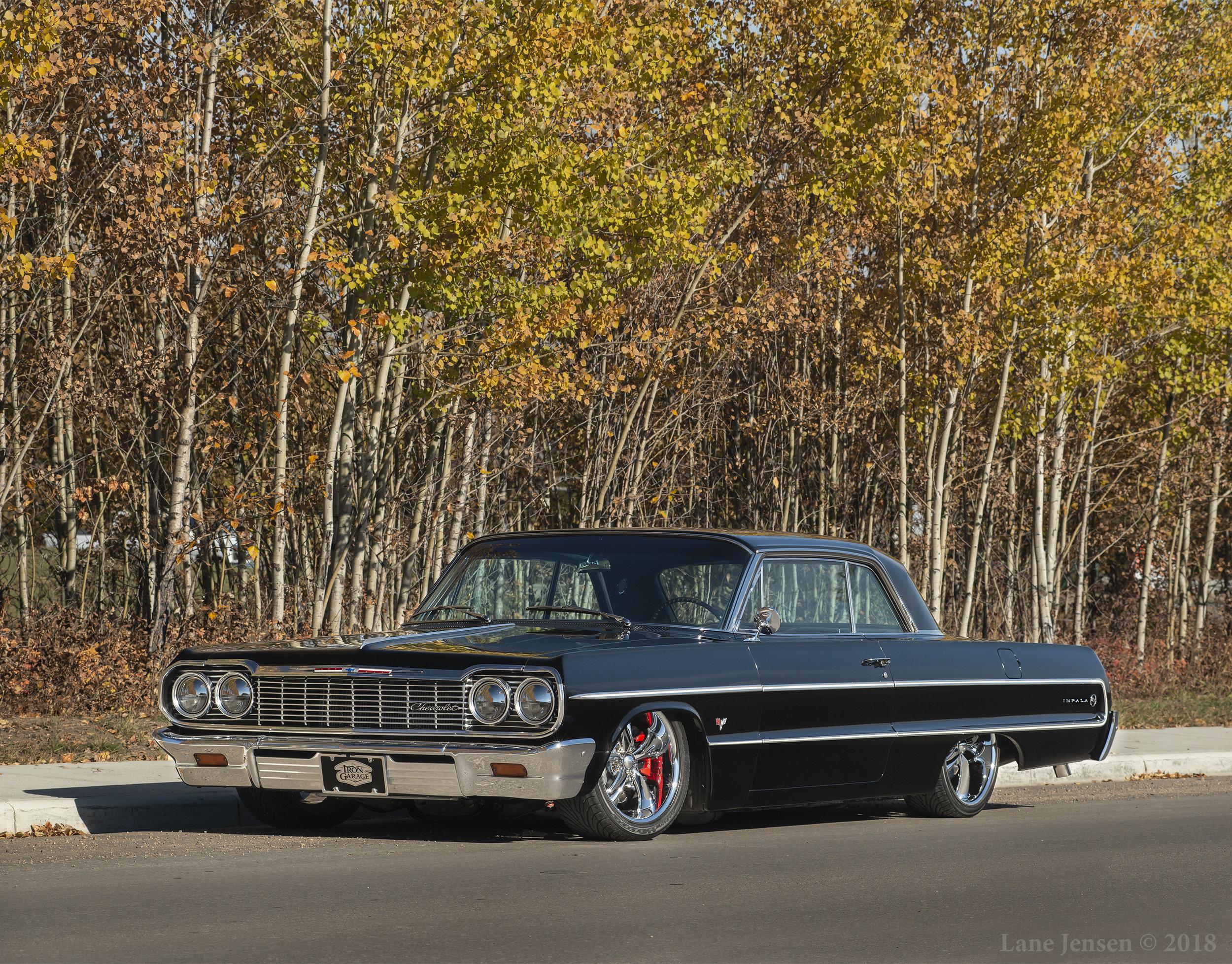 Impala done web.jpg