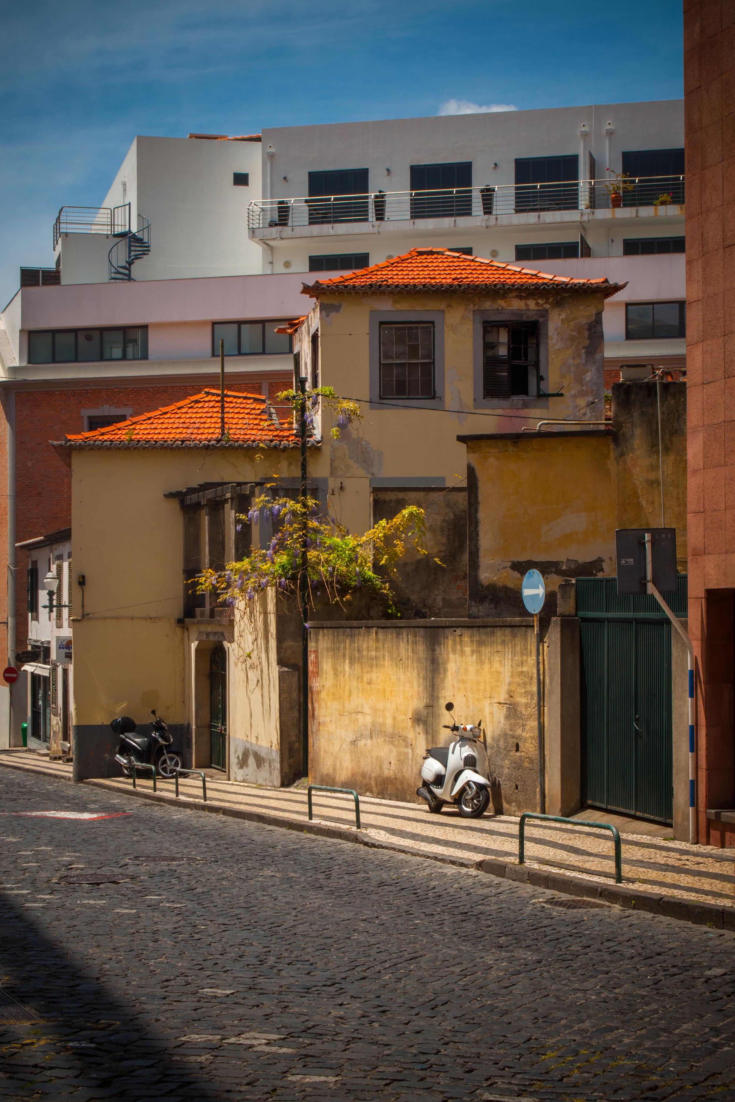 Madera - 150425 - DSC_4208.JPG