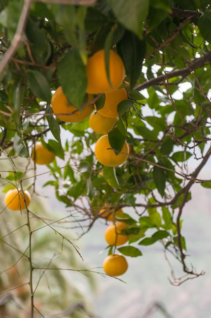Gran Canaria-0498.jpg
