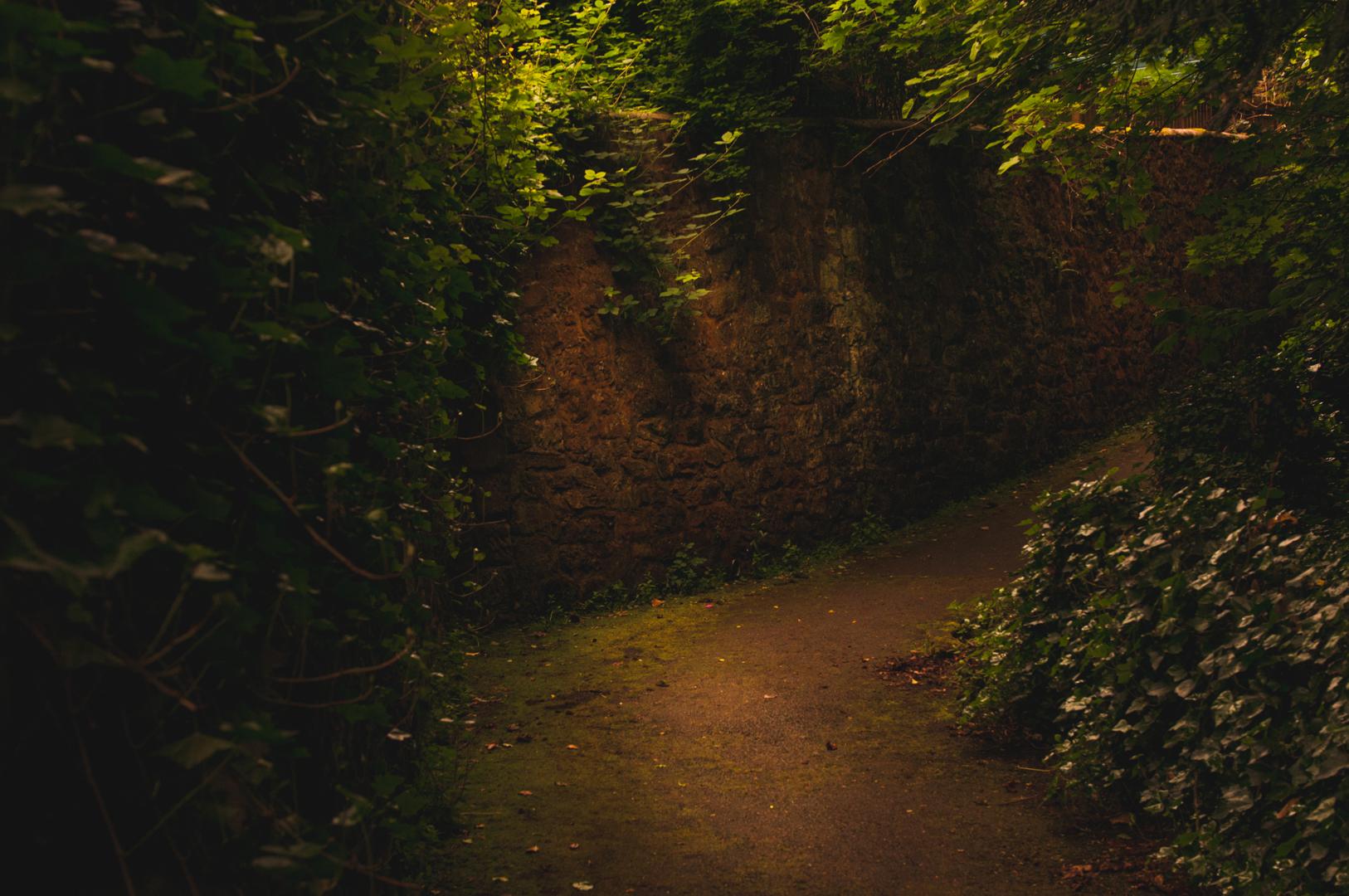 Tajemniczy ogrod-170601-8807.jpg