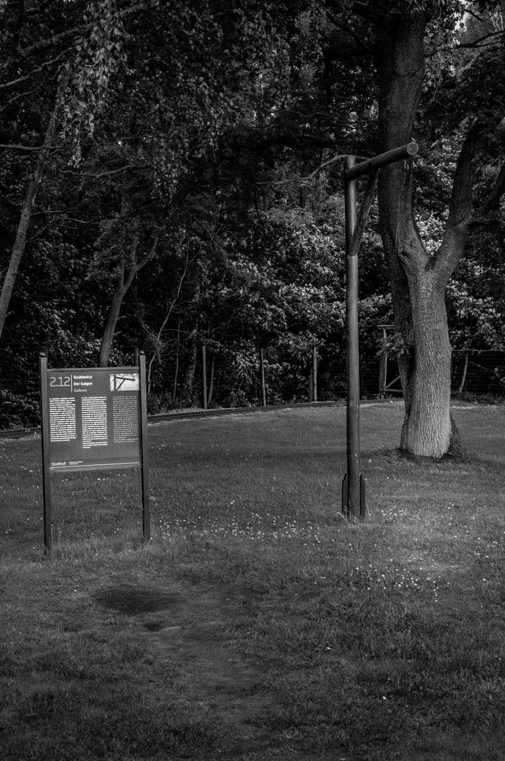 Stuthoff German Camp-170612-0602.jpg