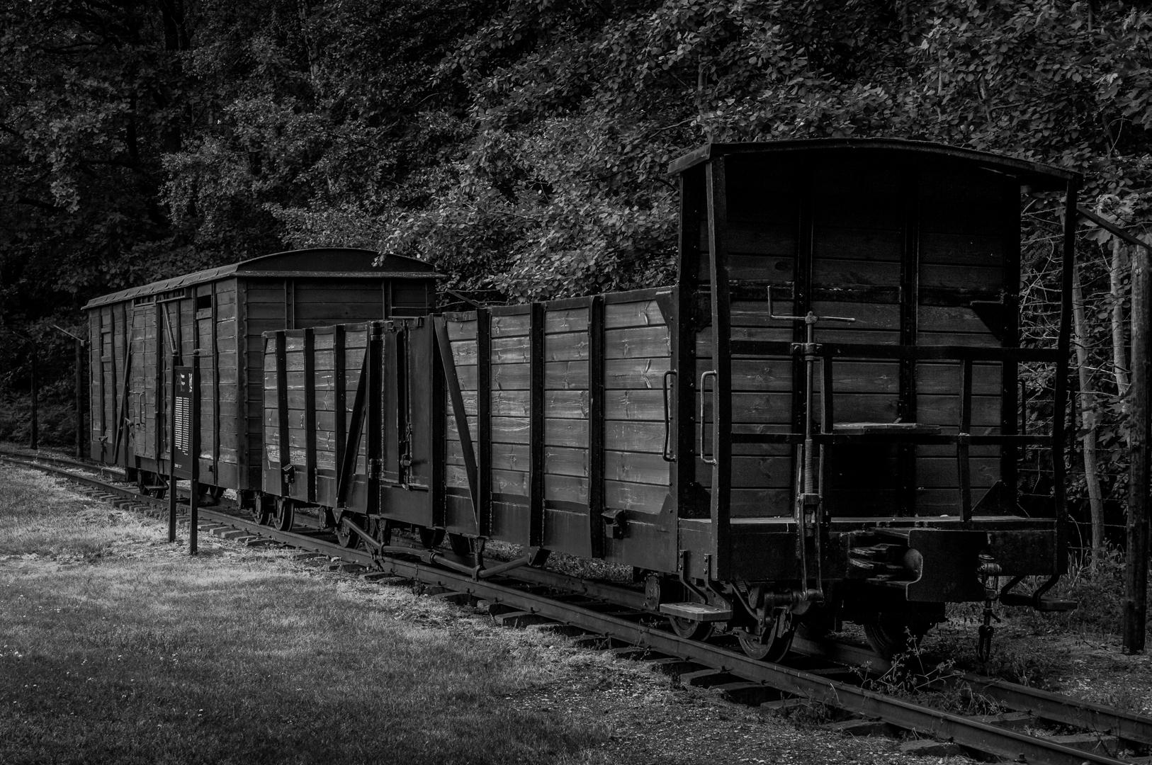 Stuthoff German Camp-170612-0608.jpg