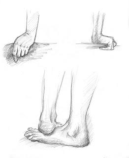 Hands+and+feet.jpg