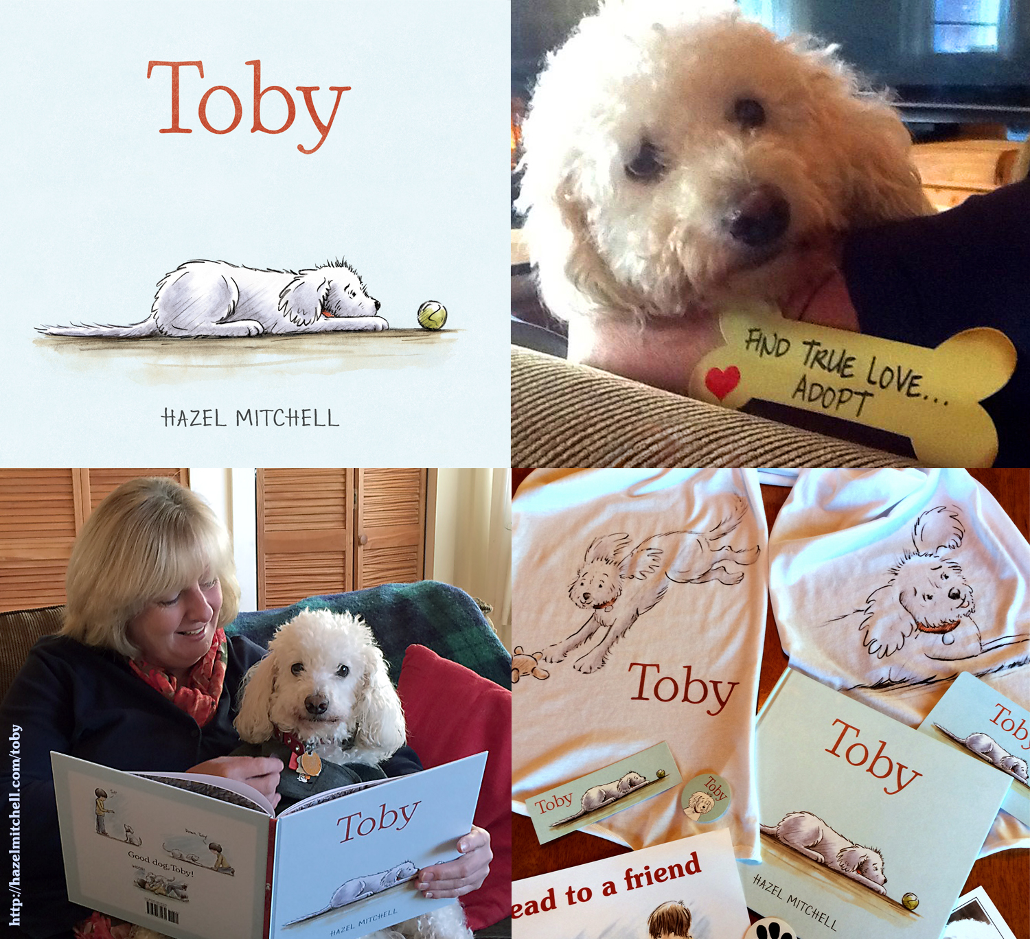 TOBY book birthday
