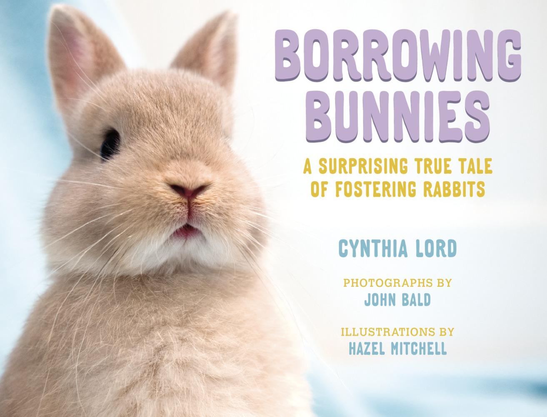 Borrowing Bunnies Image.jpg