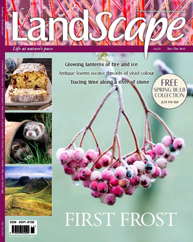 Landscape Cover.jpg