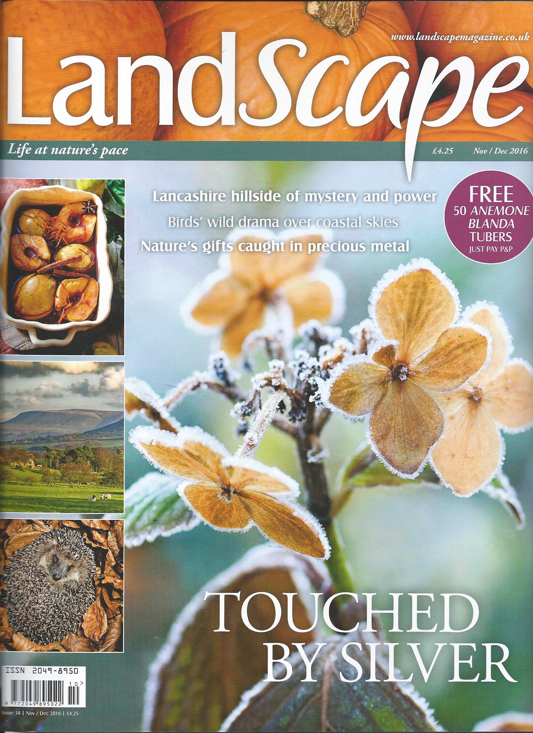 Landscape Nov 2016 Cover.jpg