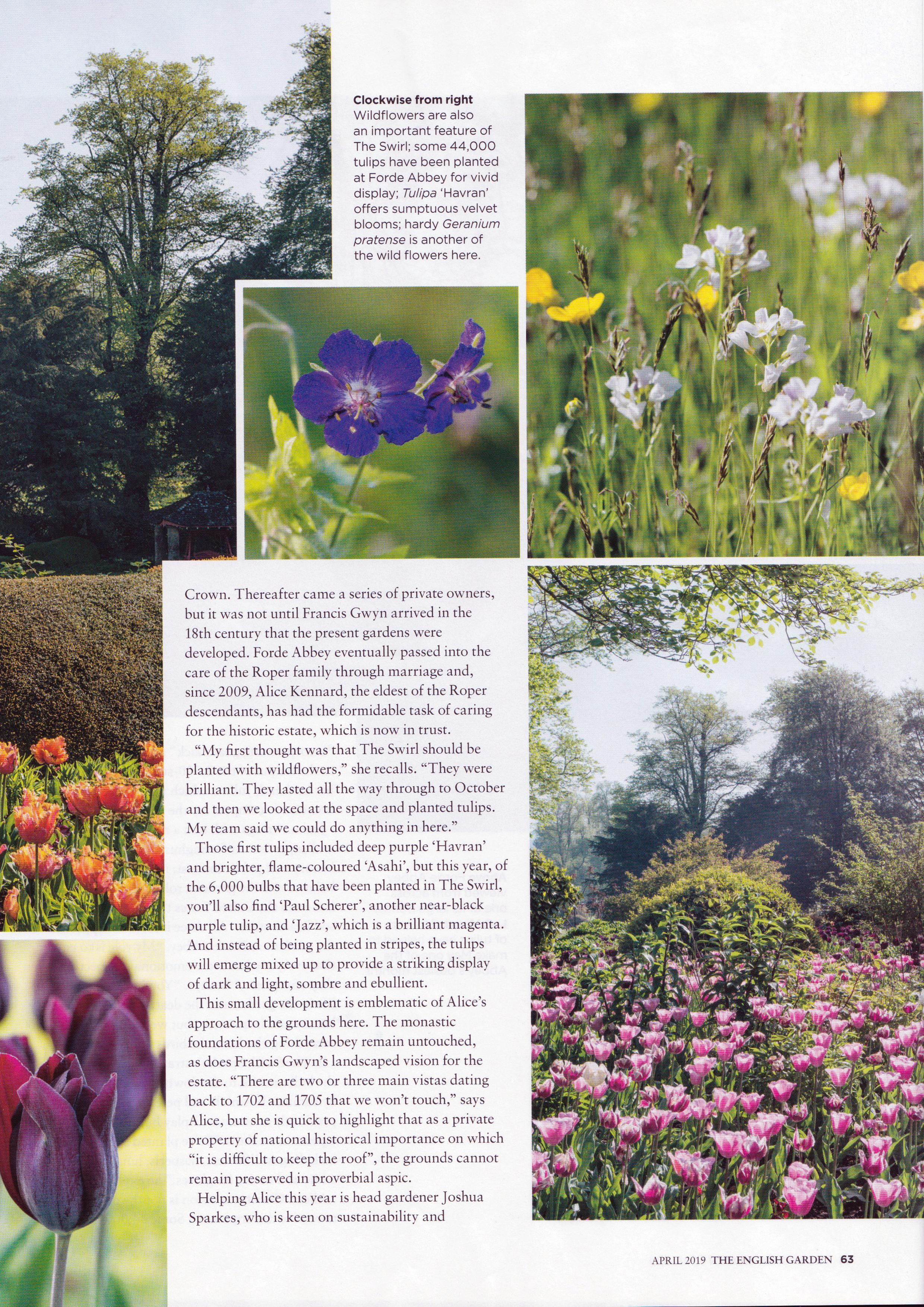 English Garden - Wheel of Wonder - Apr 2019 3.jpg