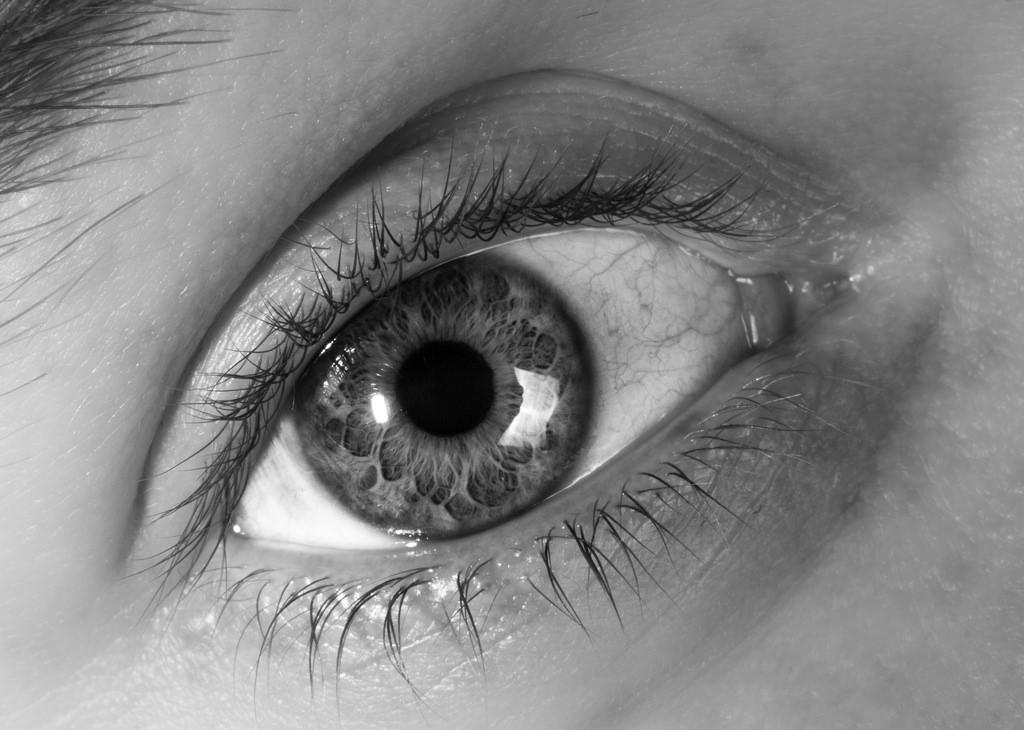 Close up Eye macro.jpg