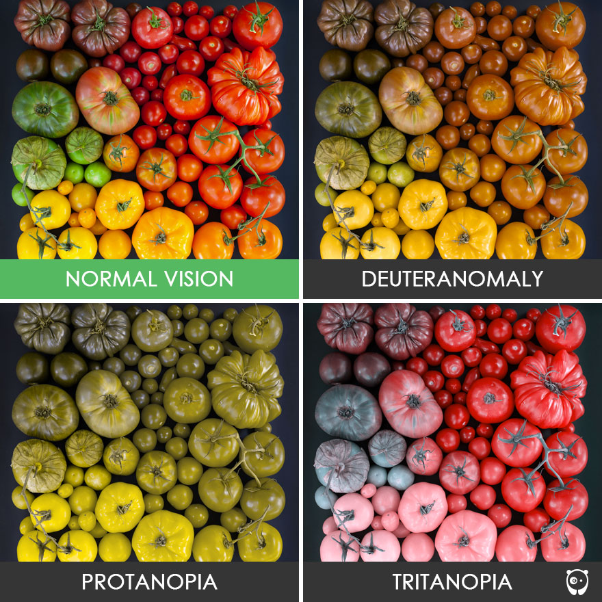 Midtown Optometry Different Types Of Color Blindness And