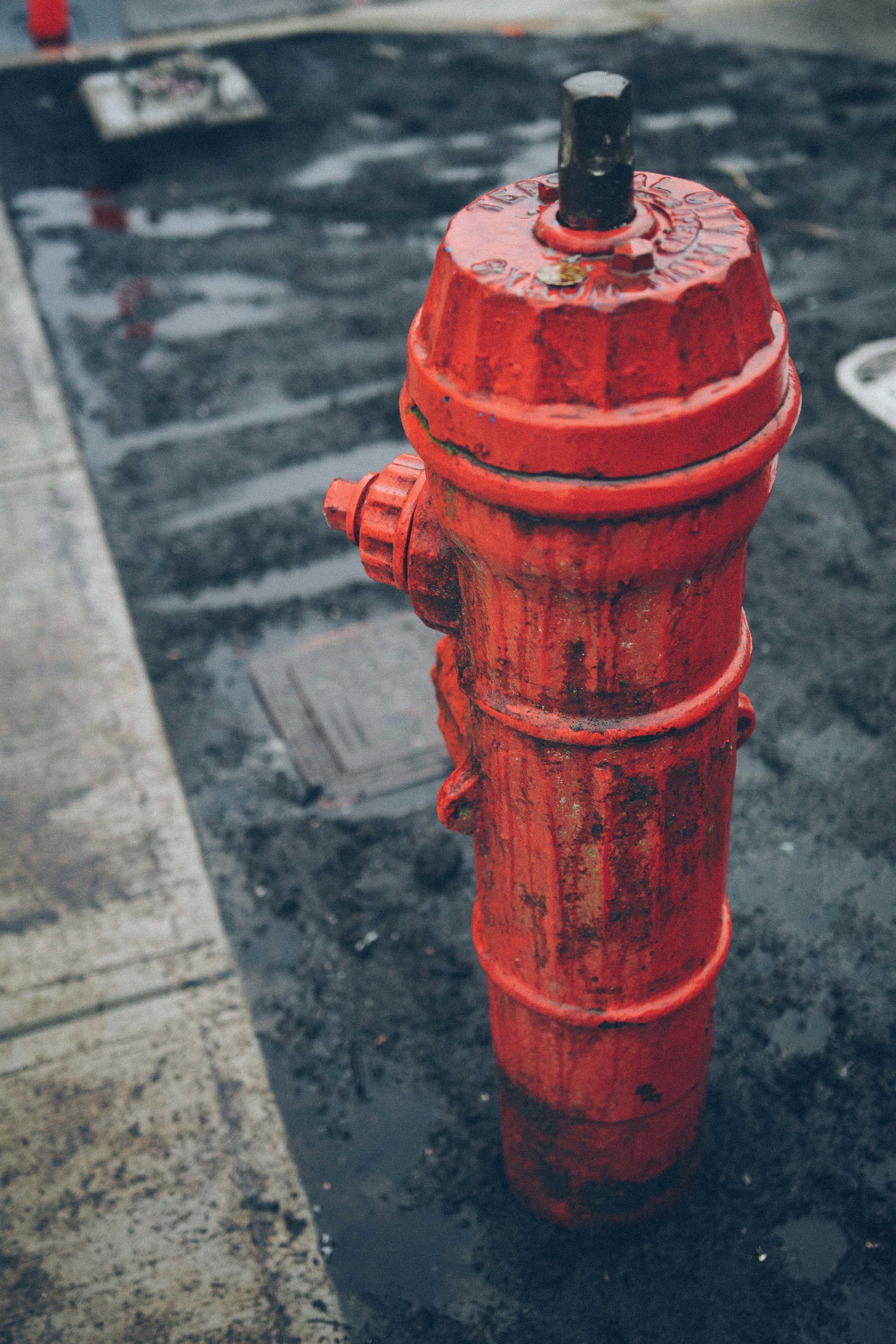 Fire hydrants fascinate me–they hold such a practical purpose but no one really gives them love except for dogs.