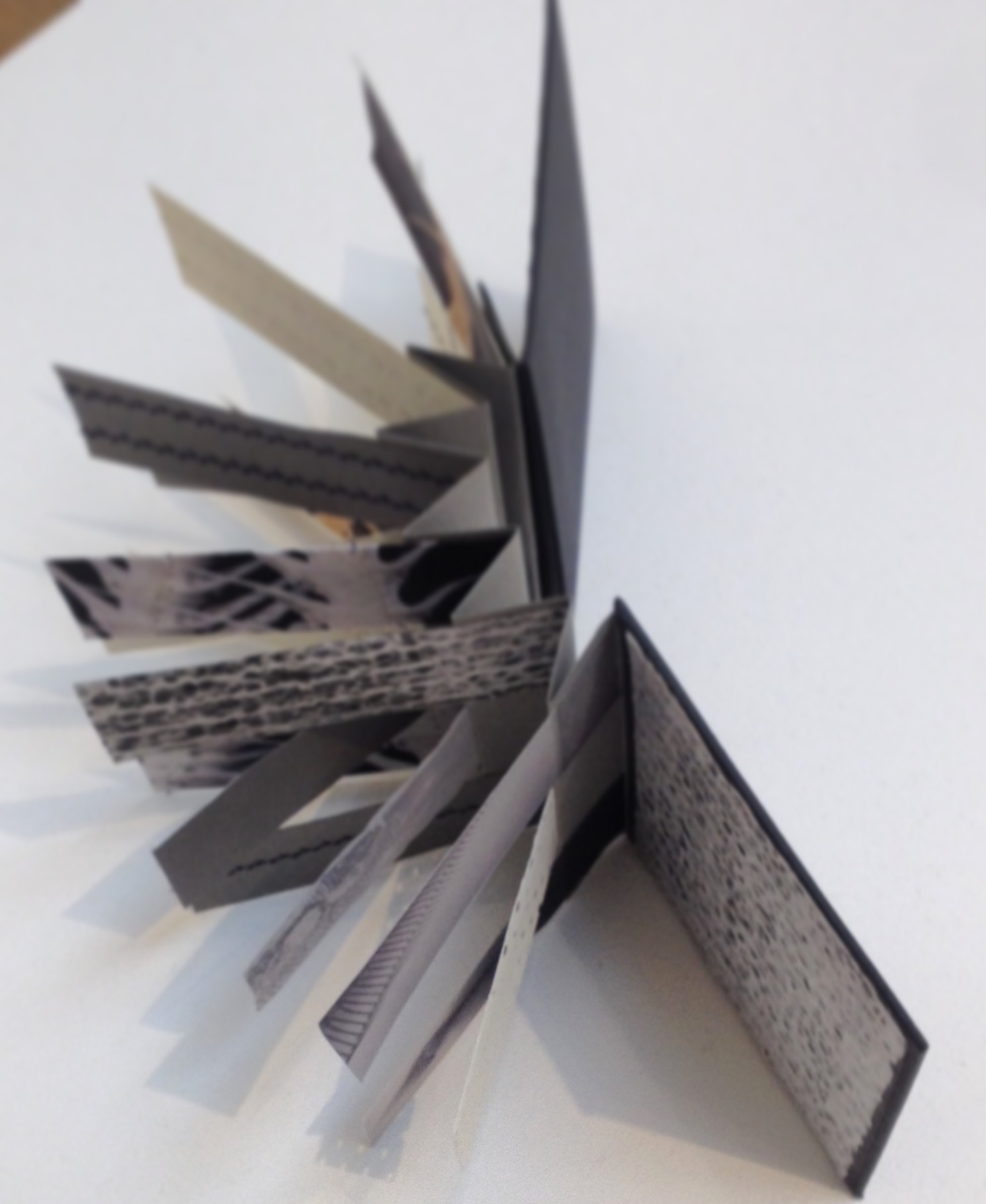 'Lateral Lines'at the VAS Converge exhibition