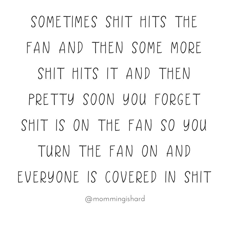 Sometimes shit hits the fan and then some more shit hits it and then pretty soon you forget shit is on the fan so you turn the fan on and everyone is covered in shit | momming is hard