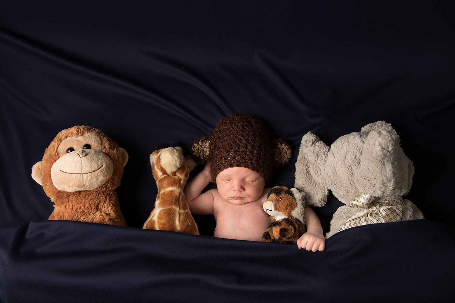 baby boy in bed with toys - redding newborn photographer - Dani D Photography