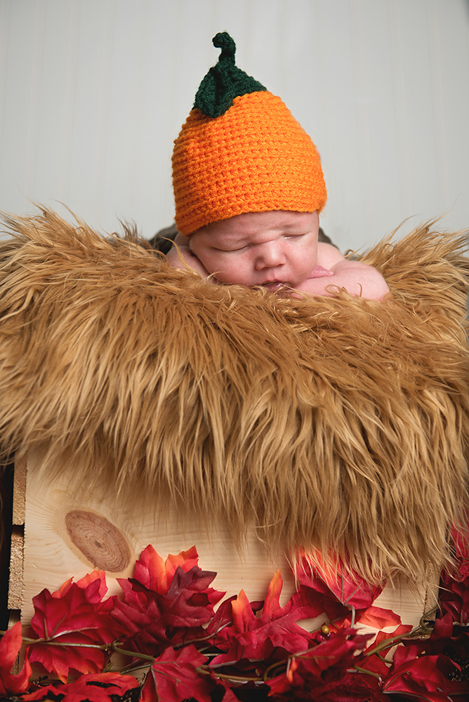 Baby boy with pumpkin hat - Redding Newborn photographer - Dani D Photography