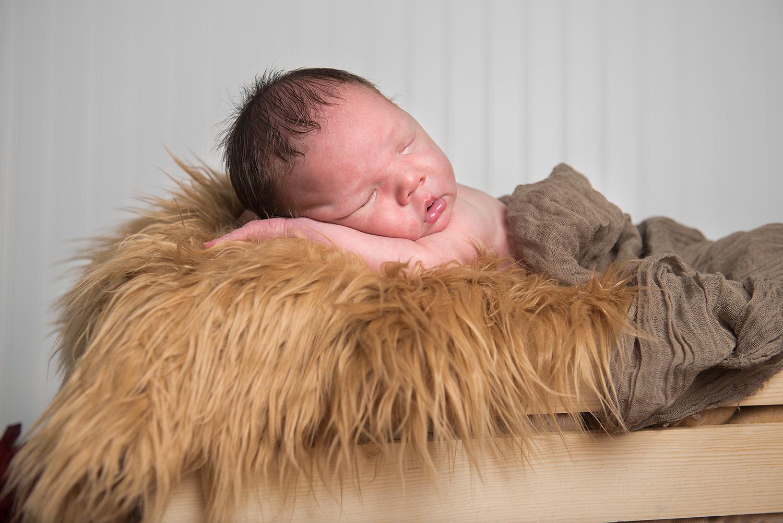 baby boy in a basket - Redding Newborn photographer - Dani D Photography