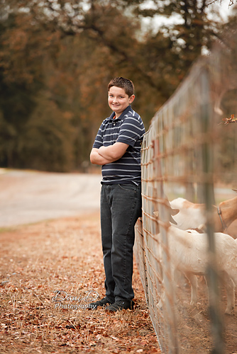 Photo of boy with goats - Redding CA Photographer - Dani D Photography